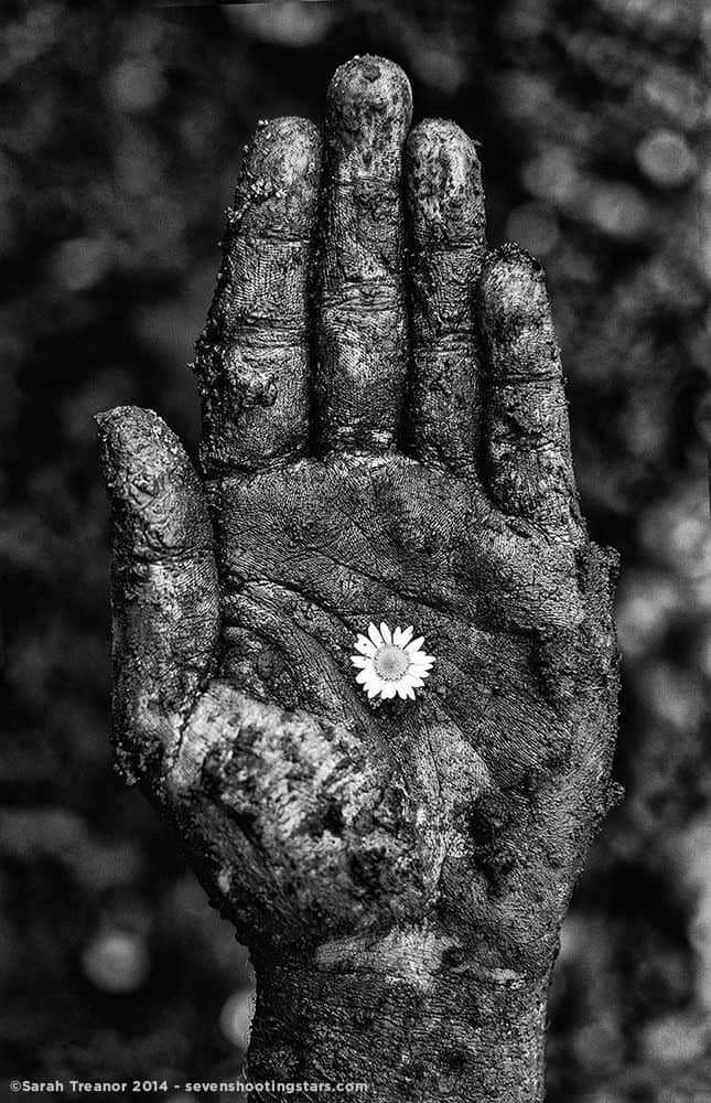 Photo of a soiled hand with a small white flower sitting on the palm
