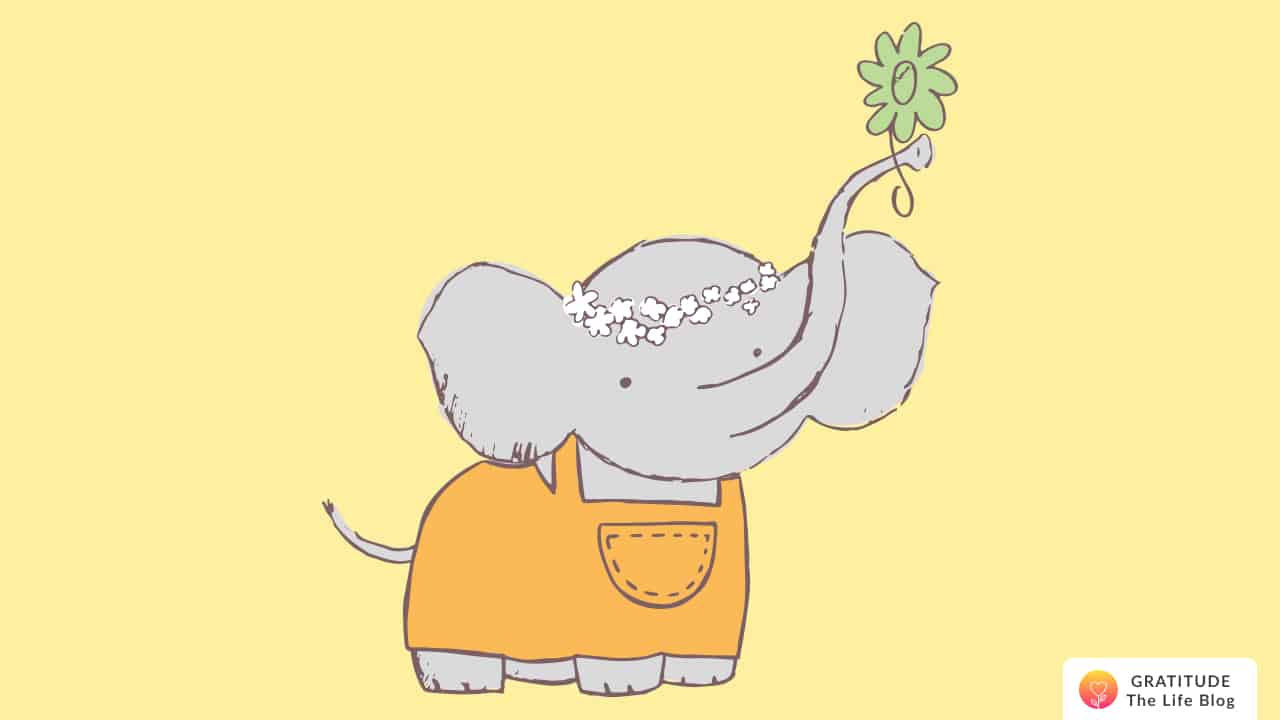 A baby elephant holding a flower