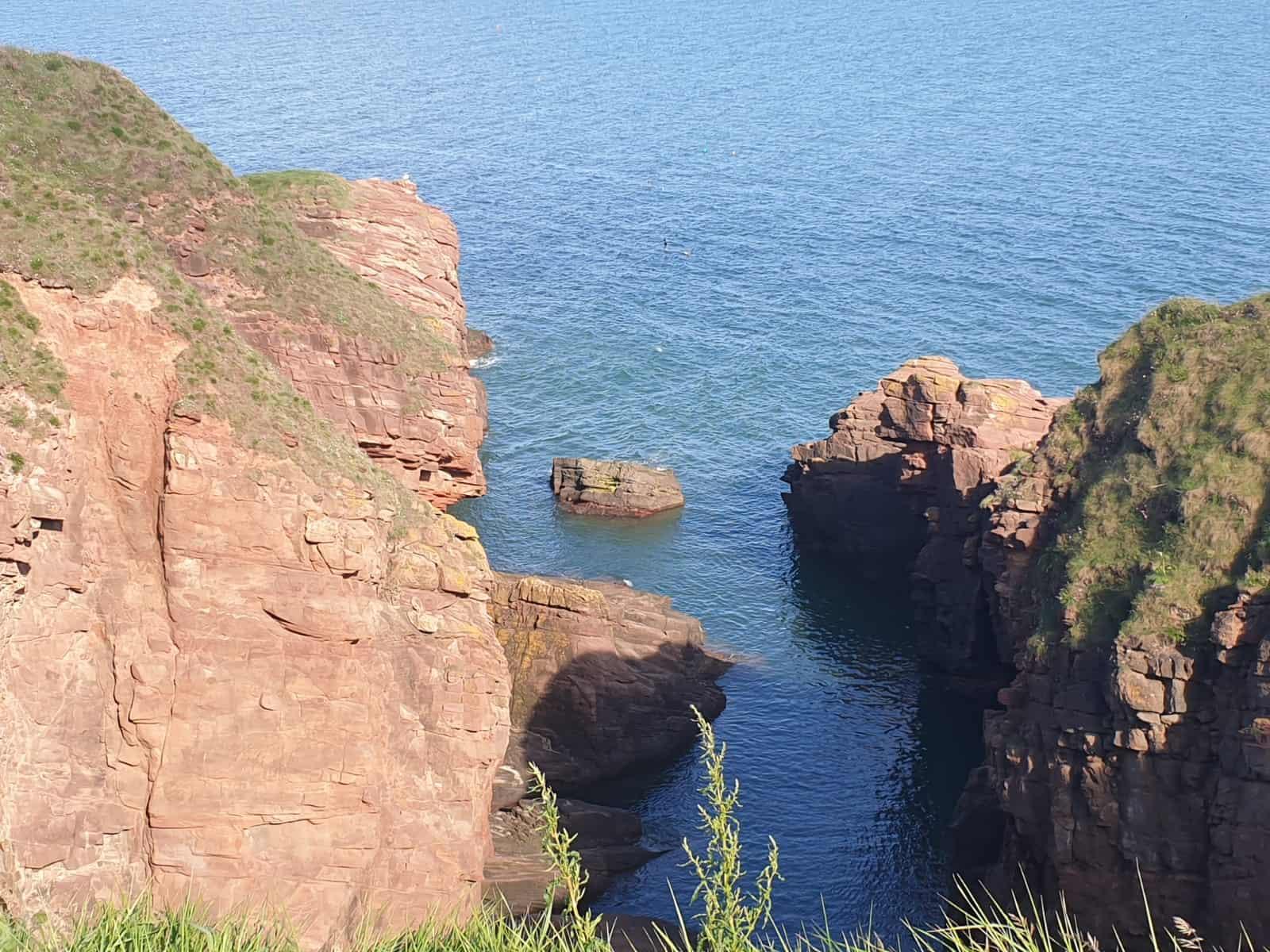 A photo from Arbroath Cliffs, Scotland