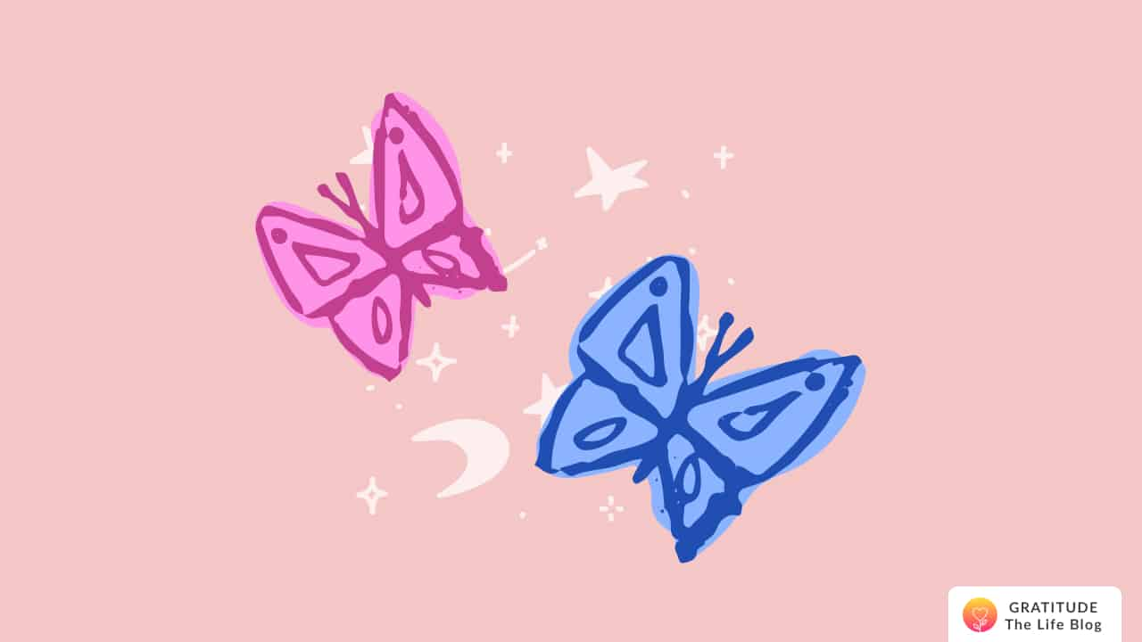Illustration of a blue and a pink butterfly