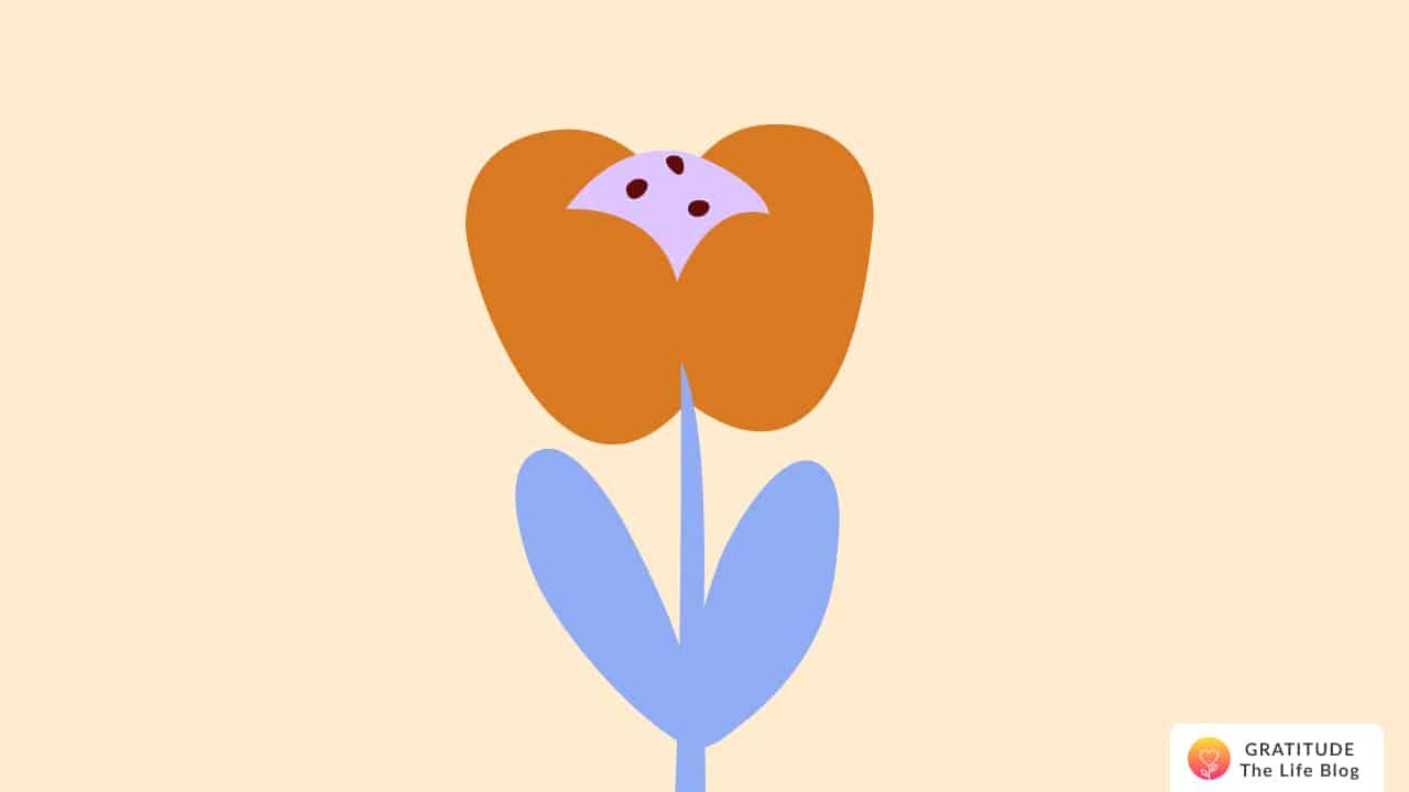 Illustration of an orange and blue flower