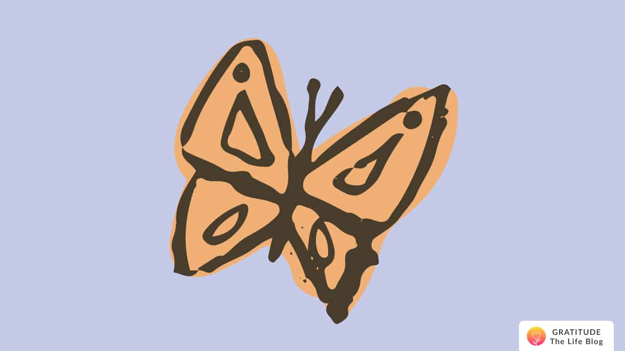 Illustration of an orange-coloured butterfly