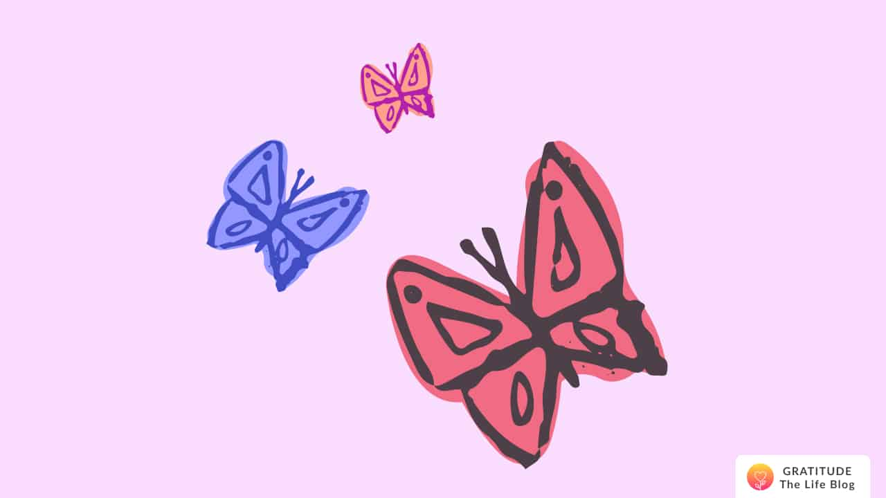 Illustration with three colourful butterflies