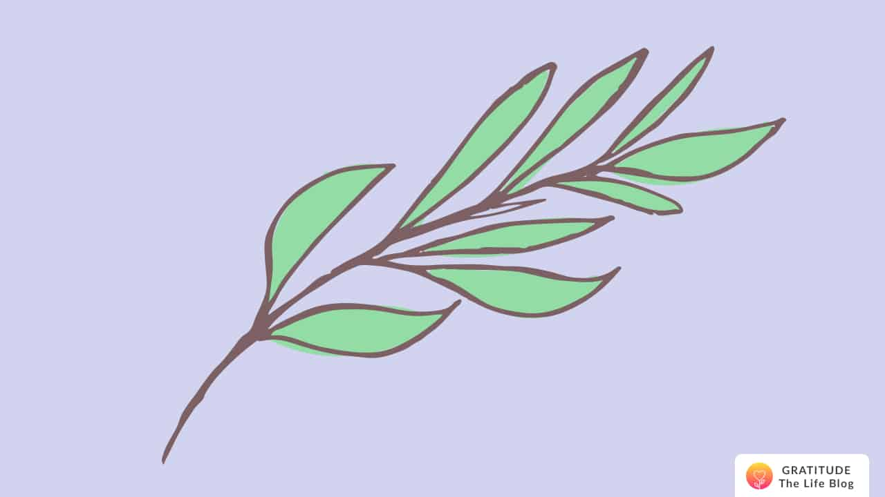 Light green leaves on a brown branch