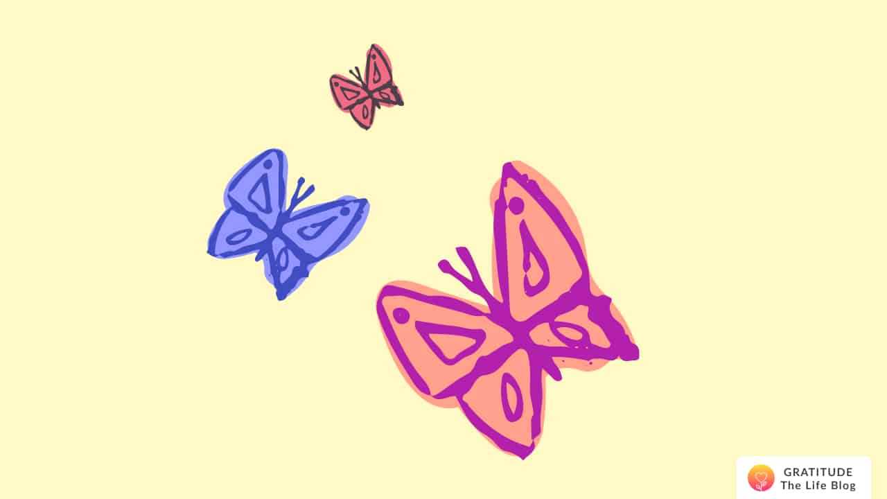 Three colourful butterflies flying