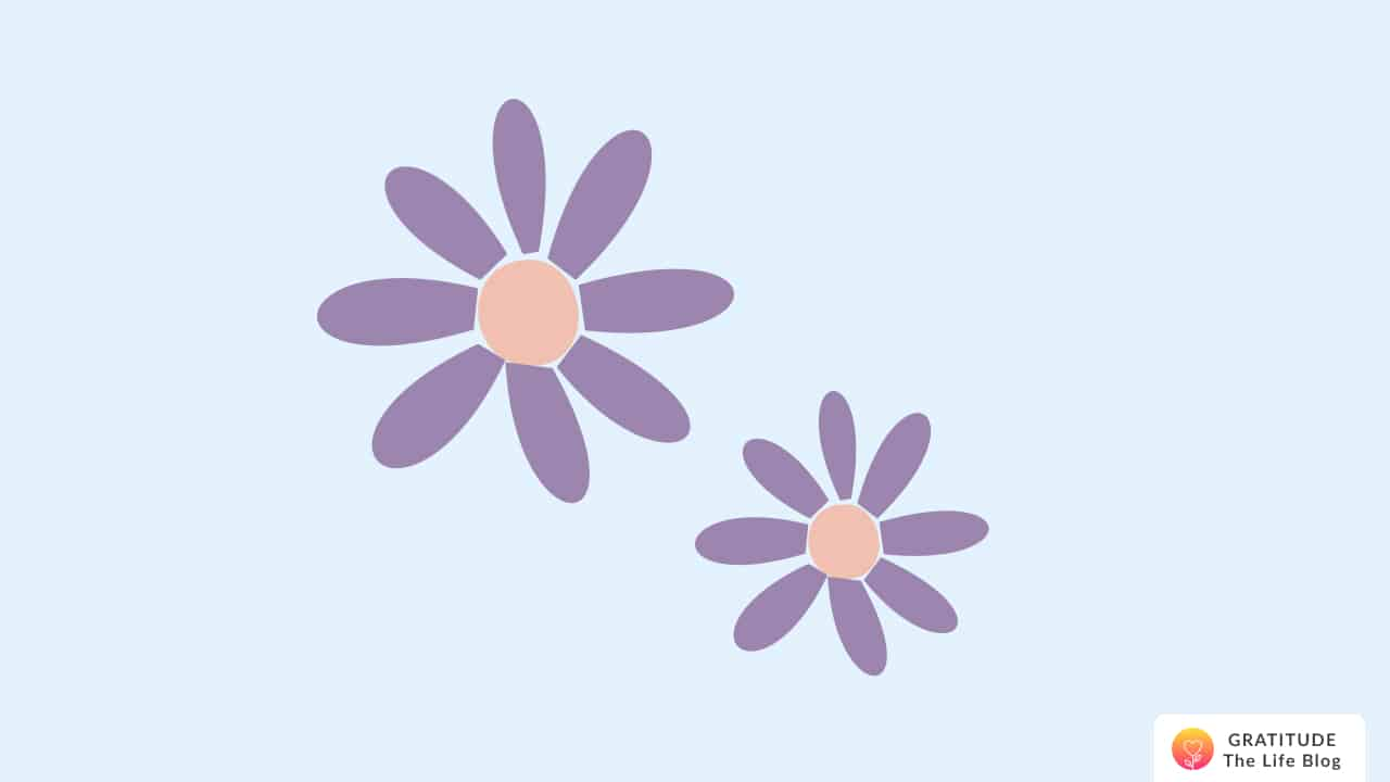Illustration of two purple daisies