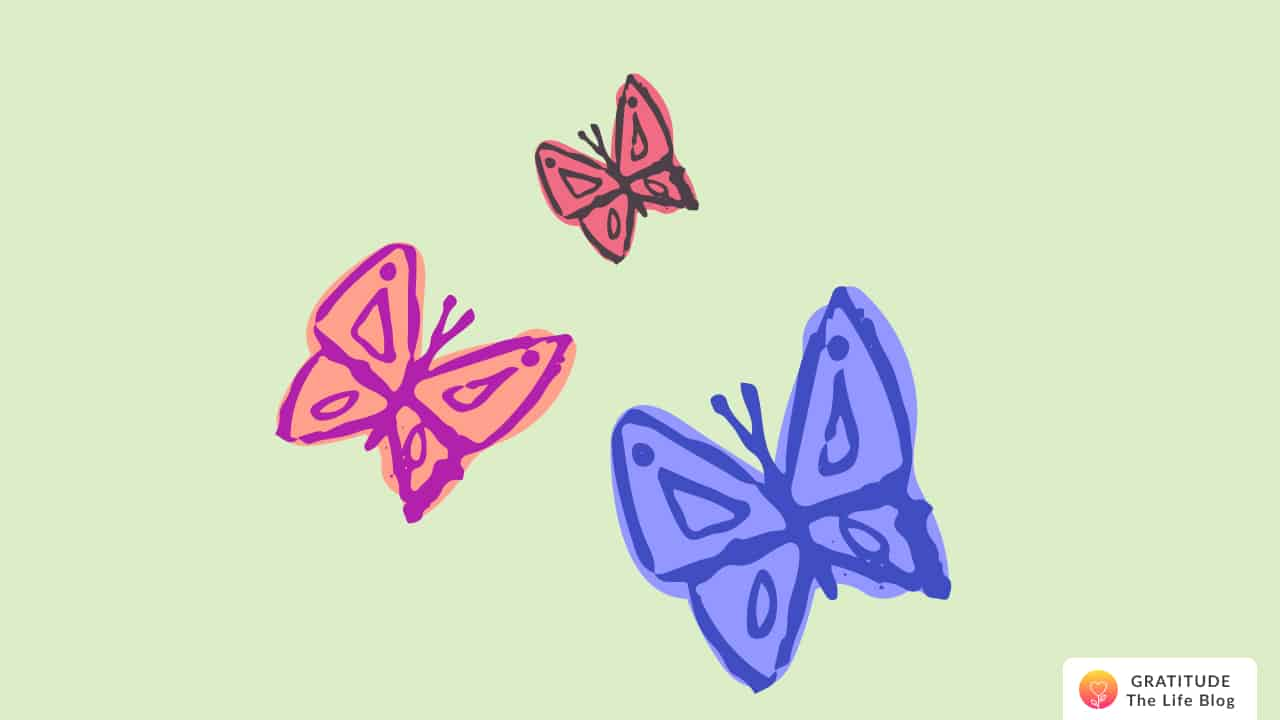 Illustration with colourful butterflies