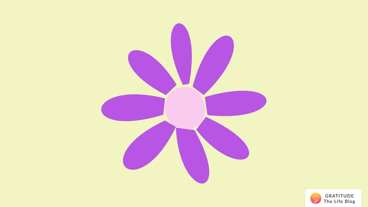 Illustration with a purple daisy