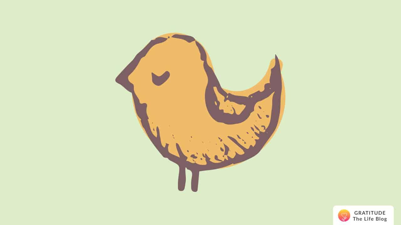 An illustration of a bird