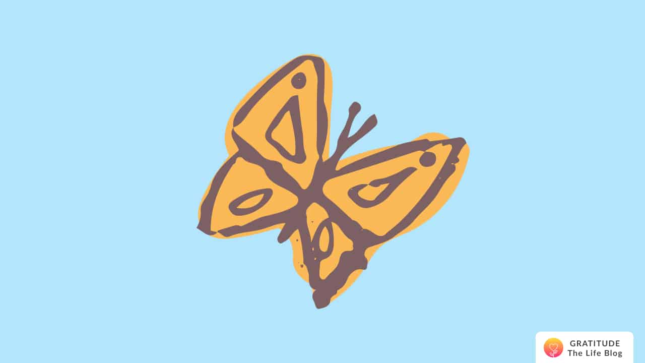 Illustration of a beautiful butterfly