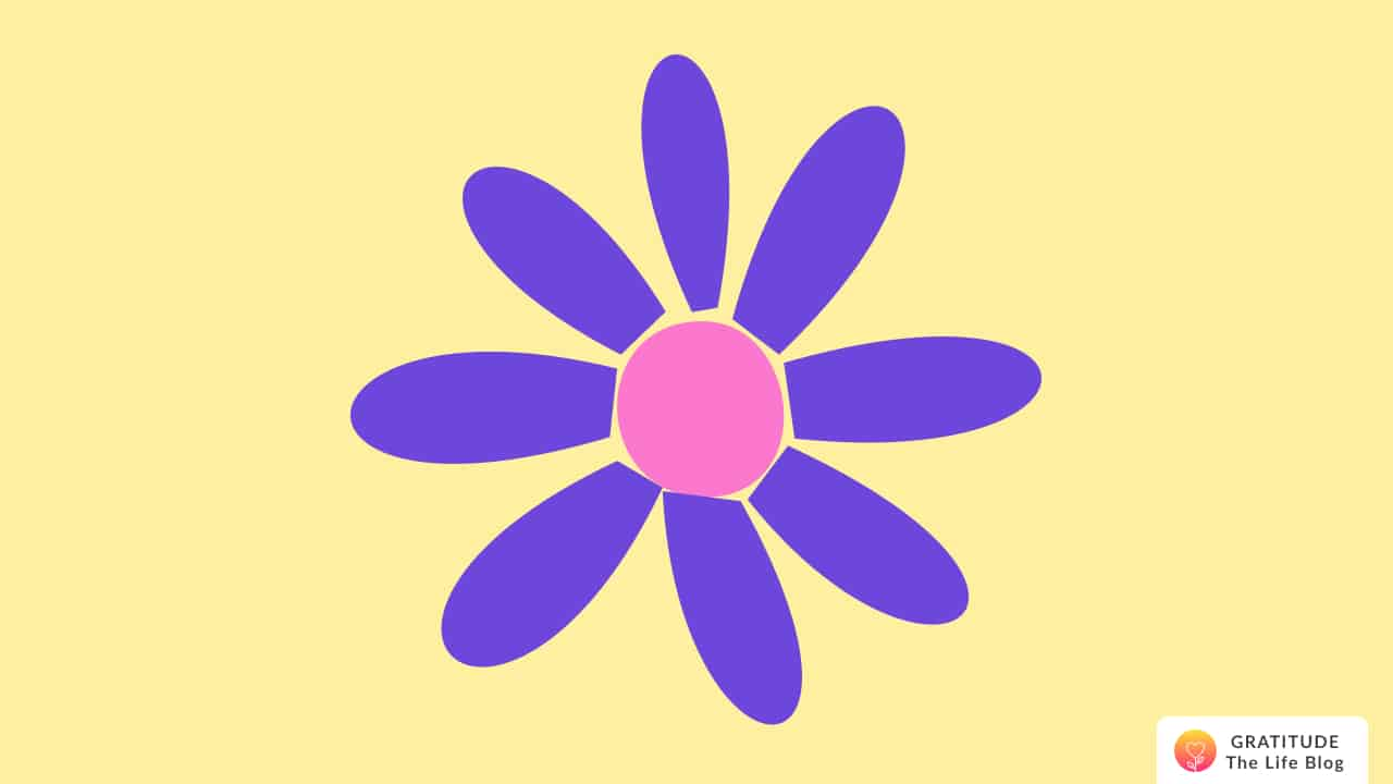 Illustration of a dark purple and pink daisy