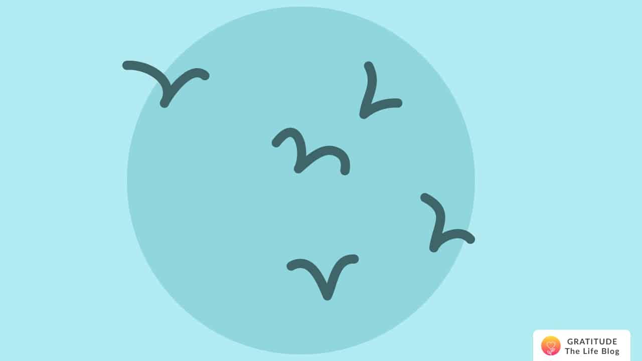 Illustration of birds flying towards the sun