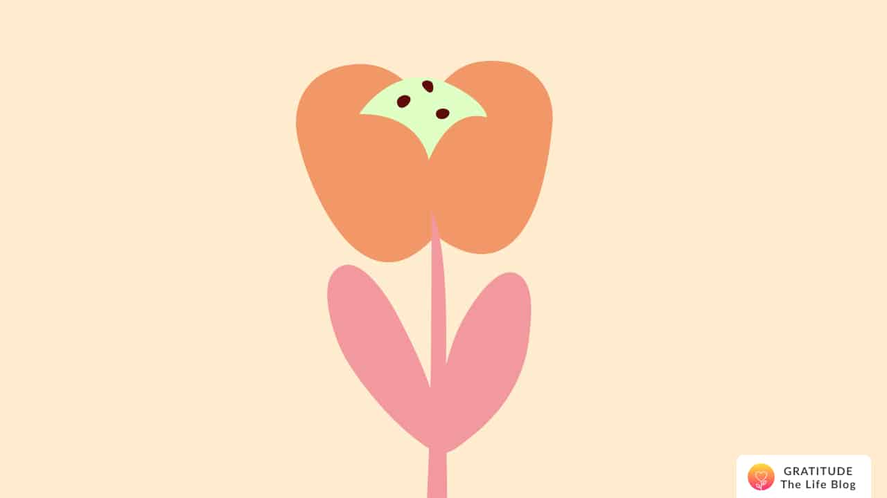 Illustration of an orange and pink flower