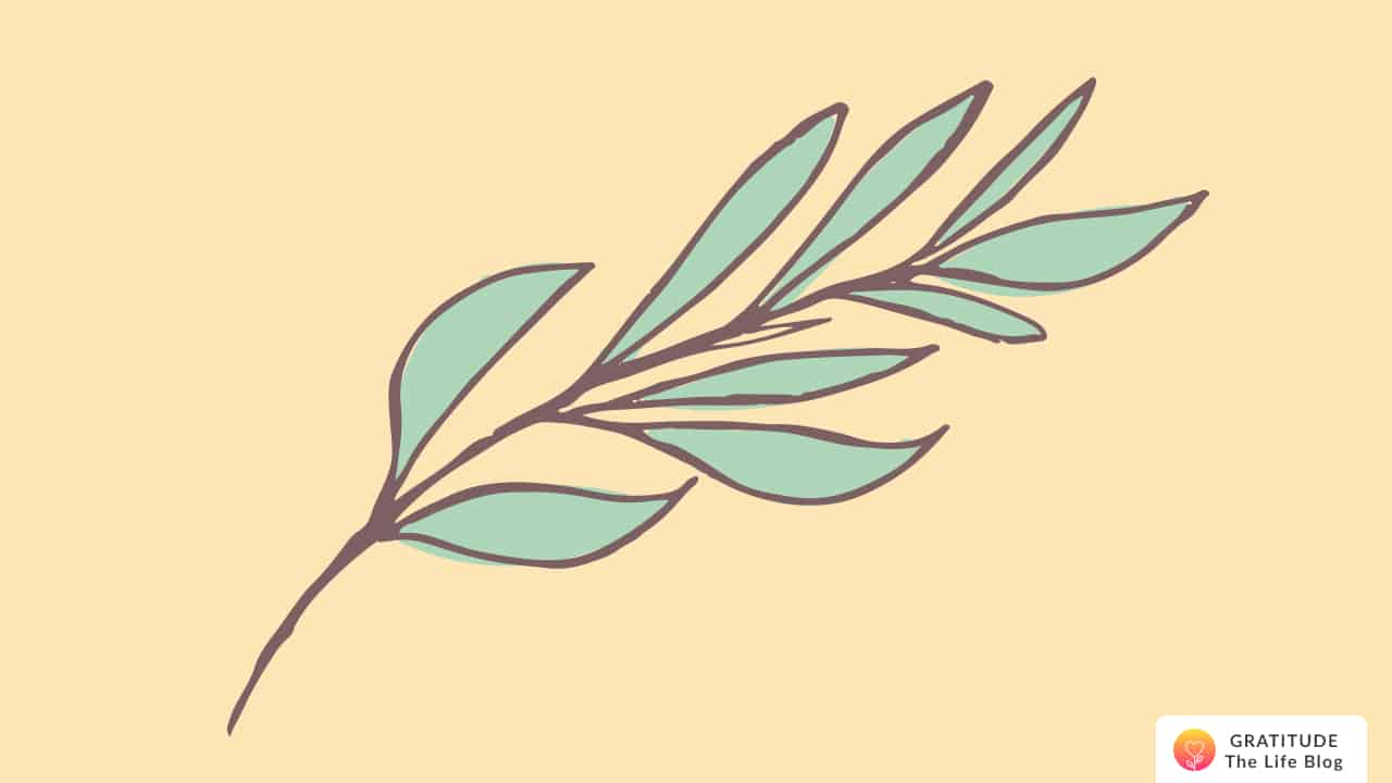 An illustration of a branch of leaves