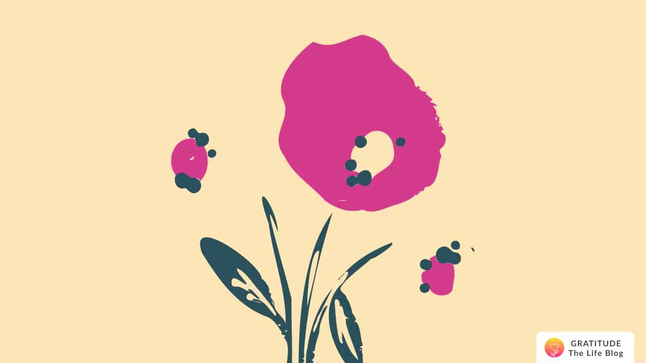Illustration of a dark pink flower