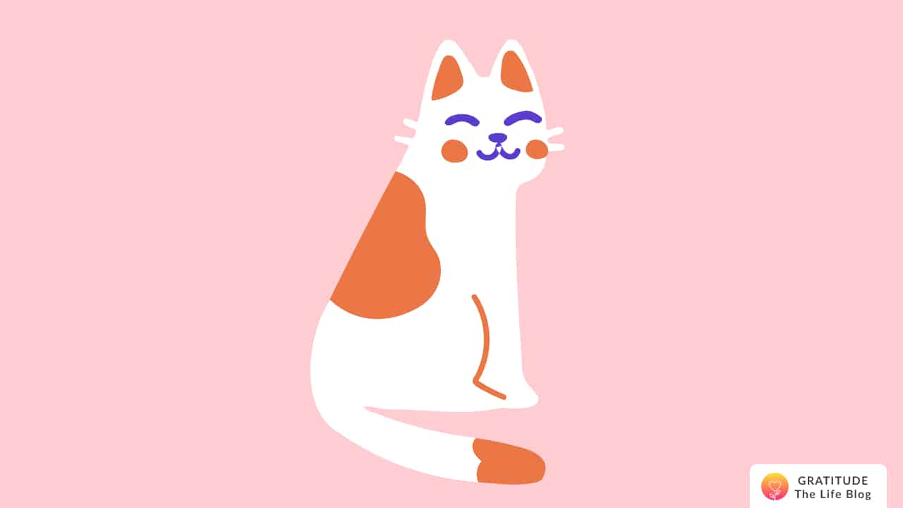 Illustration of a white and orange cat