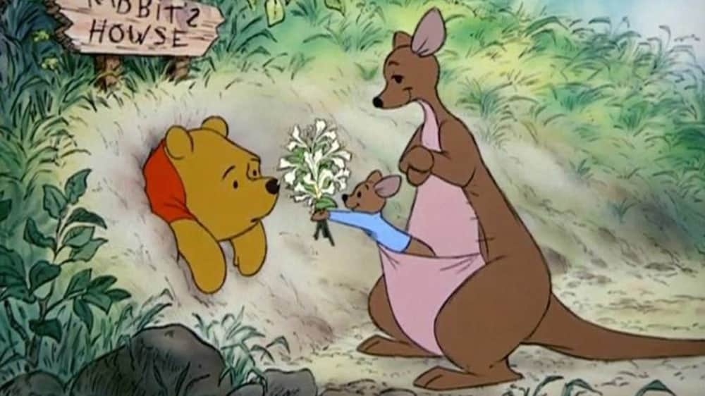 Winnie the Pooh receiving flowers from a baby kangaroo